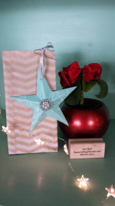 Gussetted Treat Bag w/Ornament