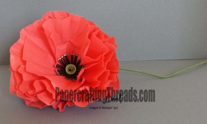 Veterans Day Flanders Field Poppy