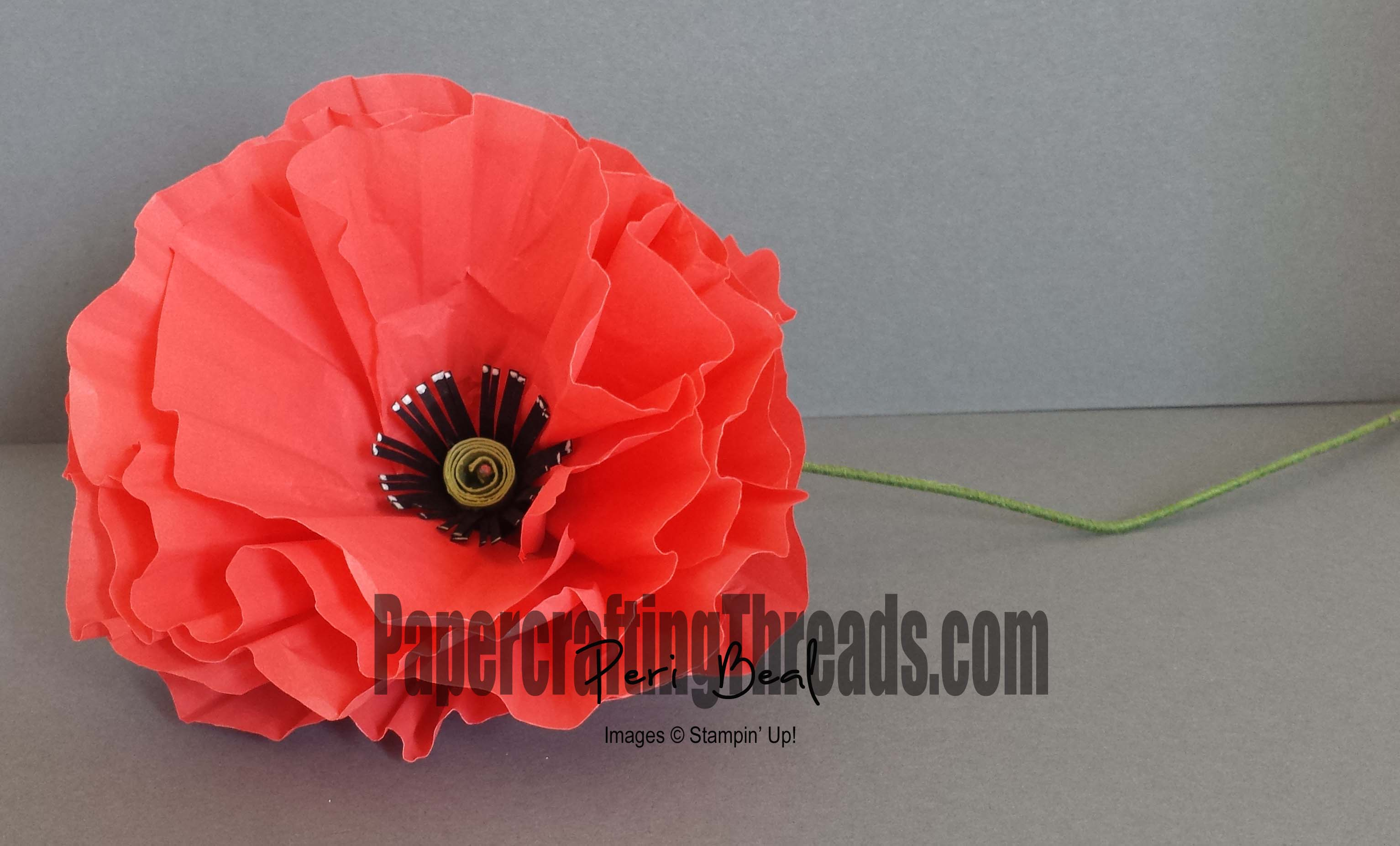 Veterans Day Flanders Fields Papercrafting Threads